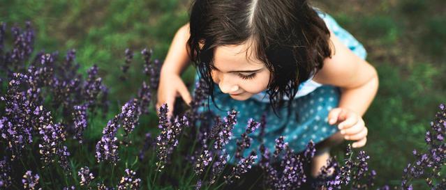 Un bambin humant une fleur dans un jardin